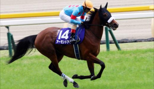 【動画】アーモンドアイ(馬)が天皇賞GⅠ優勝!次走予定はジャパンカップ?